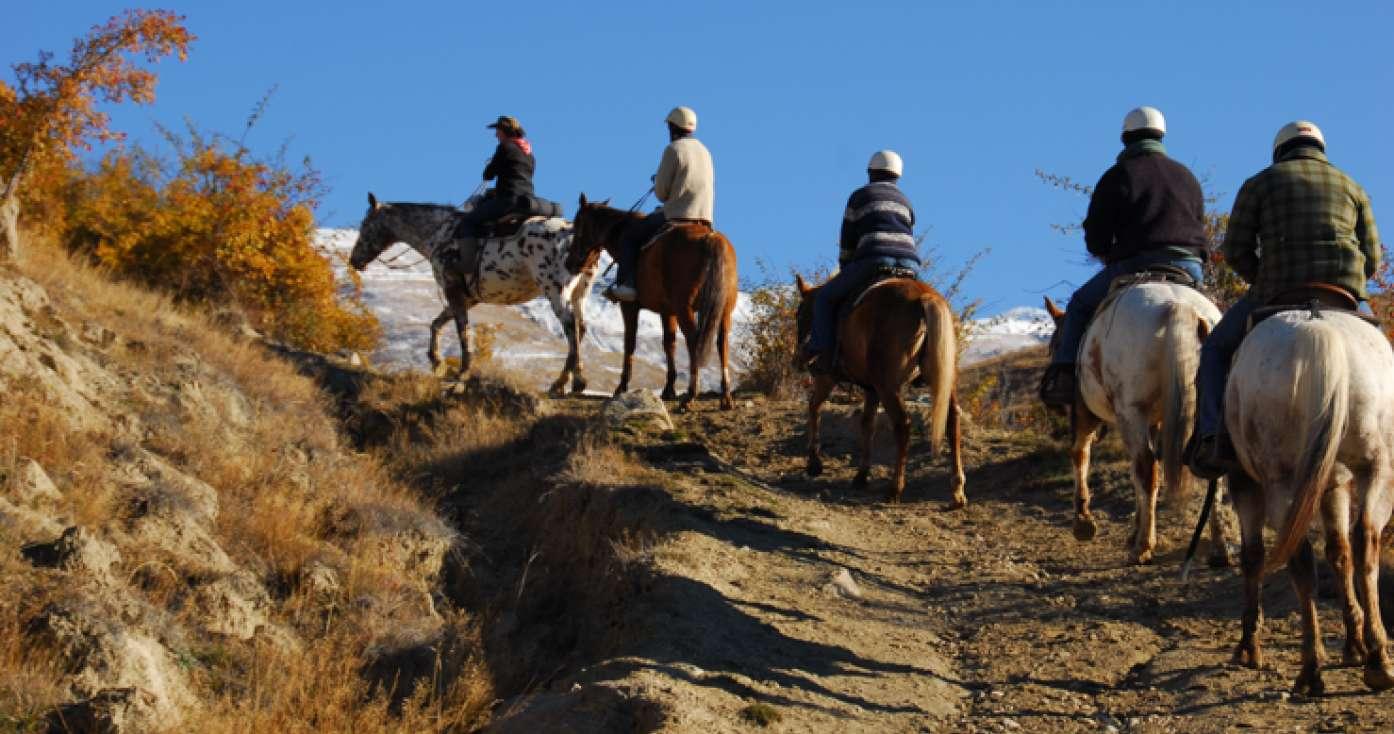CARDONA HORSE RIDING